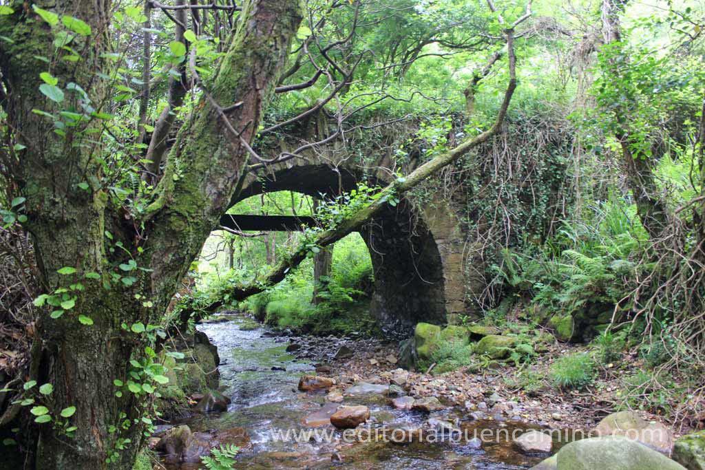 El puente que tiembla