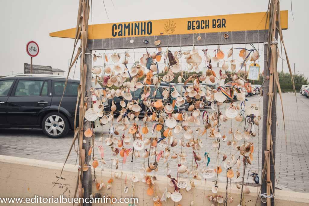 Cuadro de conchas de peregrino
