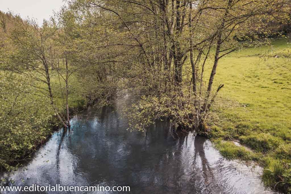 Recorrido sobre el bosque de ribera del río Sarria