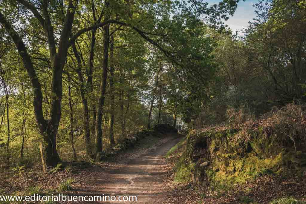 Paisaje rural gallego