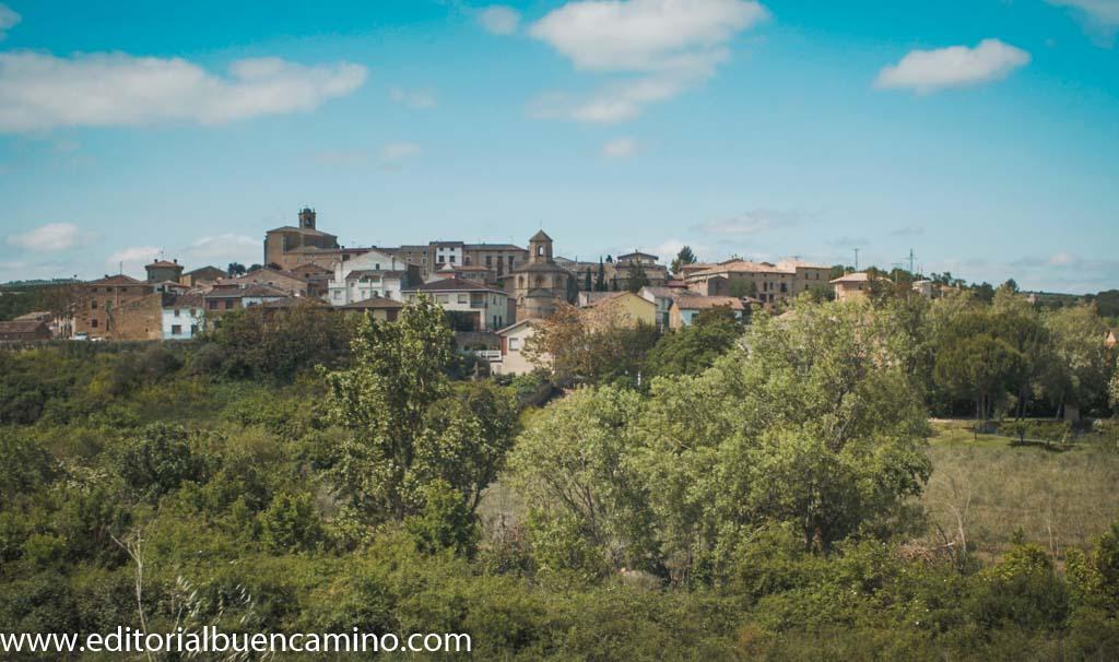 Vista de Torres del Río