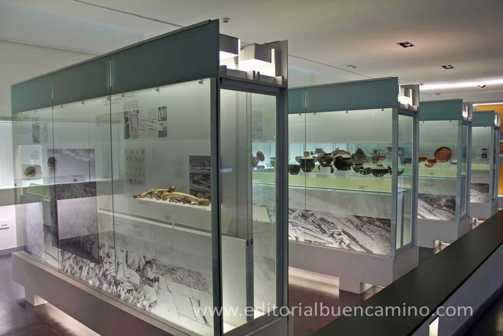 Museo del Castro Samartín