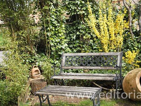 Apartamento turístico Loft & Garden
